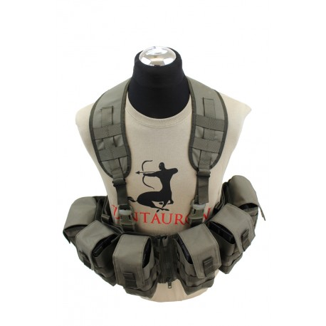 Nonmodularer Split Front Chest Rig